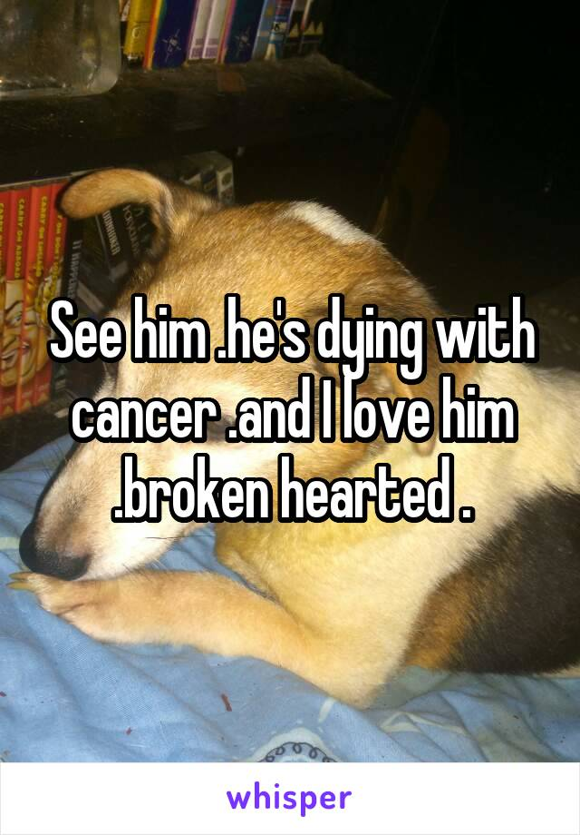 See him .he's dying with cancer .and I love him .broken hearted .