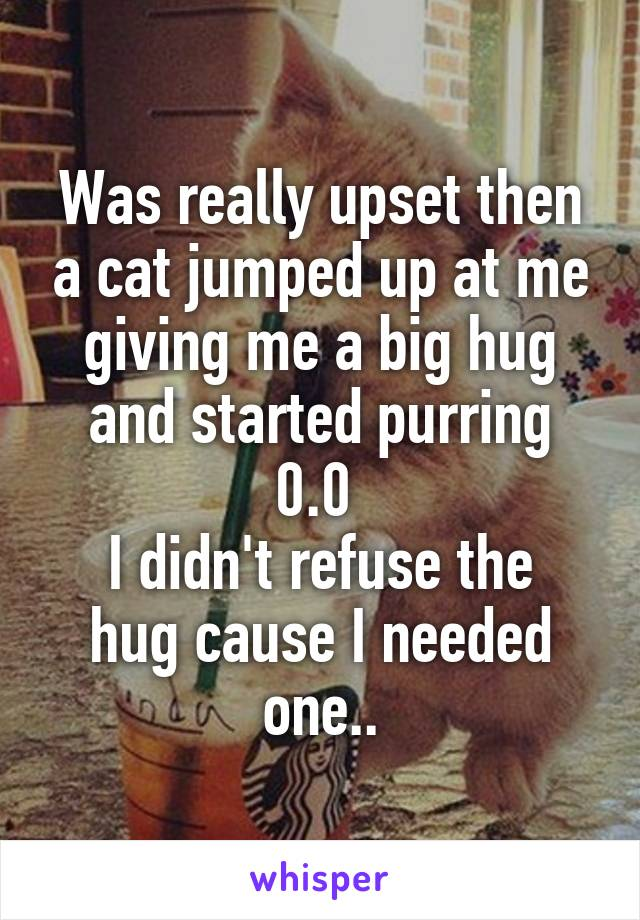 Was really upset then a cat jumped up at me giving me a big hug and started purring 0.0  I didn't refuse the hug cause I needed one..
