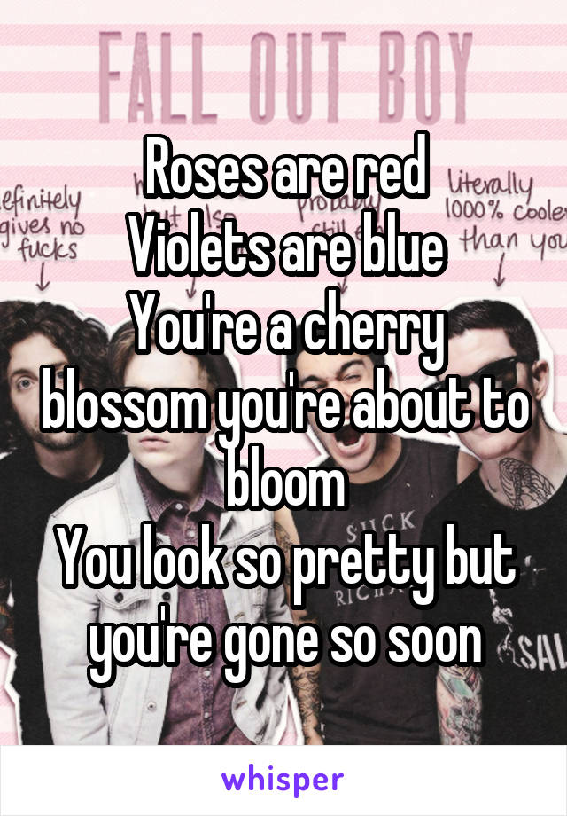 Roses are red Violets are blue You're a cherry blossom you're about to bloom You look so pretty but you're gone so soon