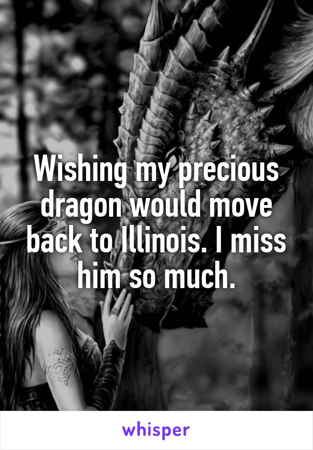 Wishing my precious dragon would move back to Illinois. I miss him so much.