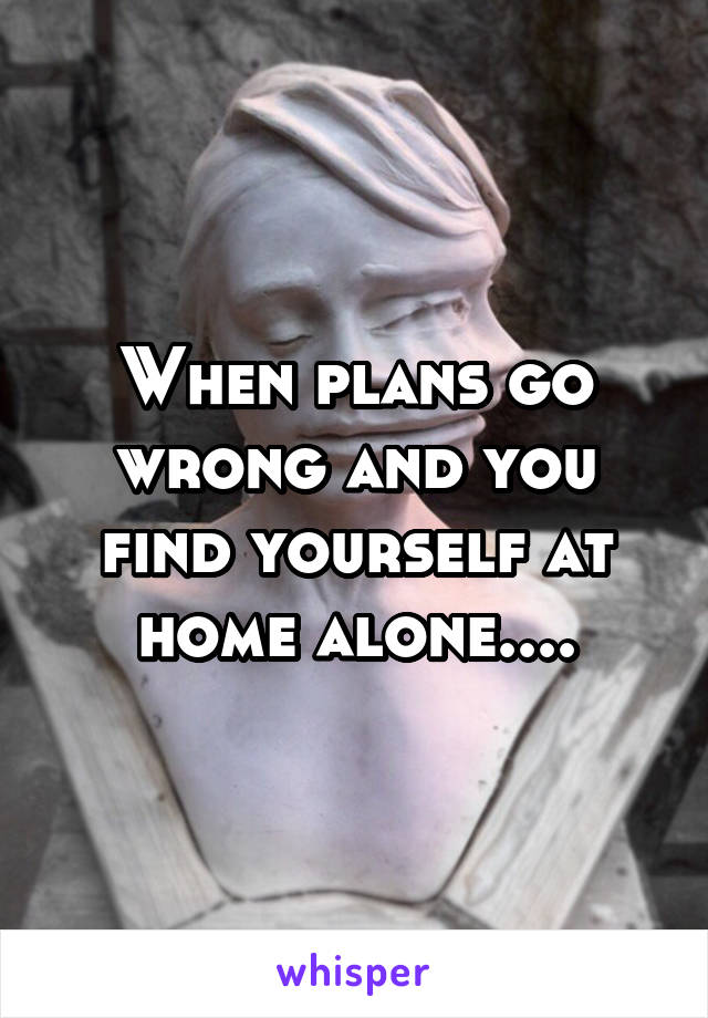 When plans go wrong and you find yourself at home alone....