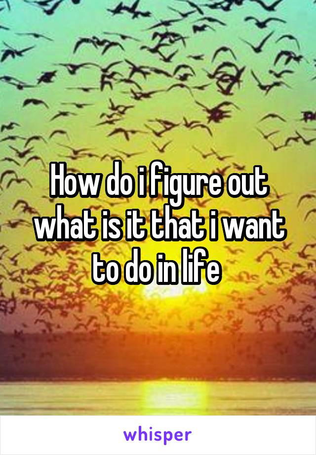 How do i figure out what is it that i want to do in life