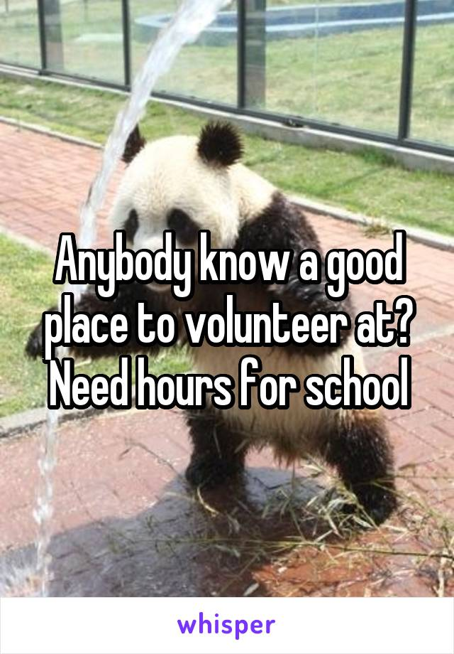 Anybody know a good place to volunteer at? Need hours for school