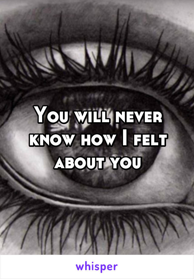You will never know how I felt about you
