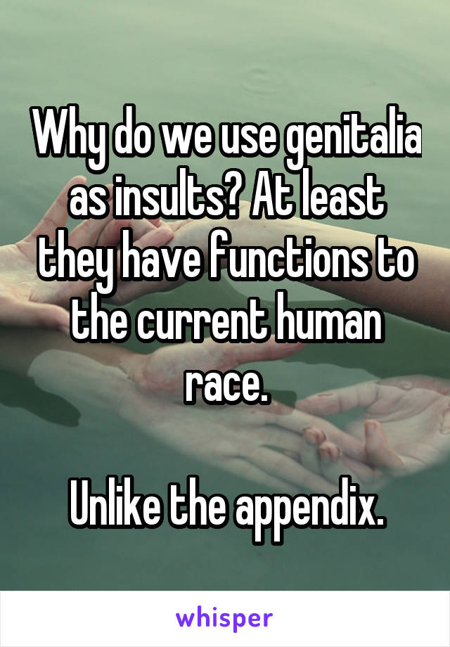 Why do we use genitalia as insults? At least they have functions to the current human race.  Unlike the appendix.