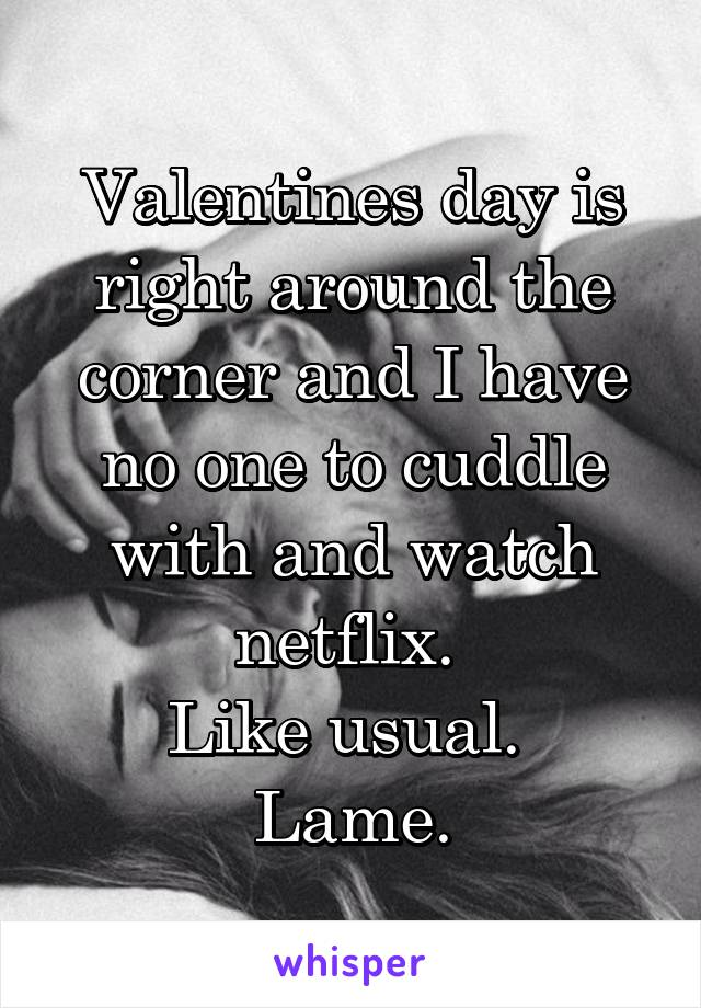 Valentines day is right around the corner and I have no one to cuddle with and watch netflix.  Like usual.  Lame.