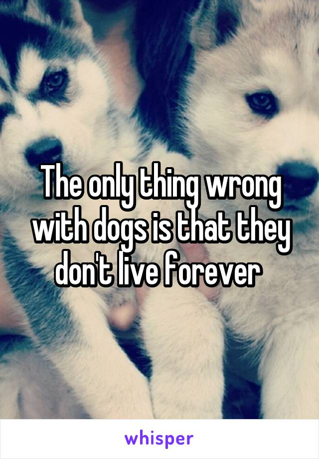 The only thing wrong with dogs is that they don't live forever