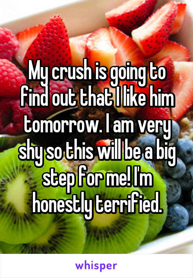 My crush is going to find out that I like him tomorrow. I am very shy so this will be a big step for me! I'm honestly terrified.
