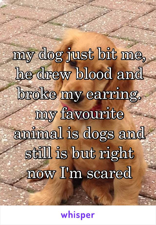 my dog just bit me, he drew blood and broke my earring. my favourite animal is dogs and still is but right now I'm scared