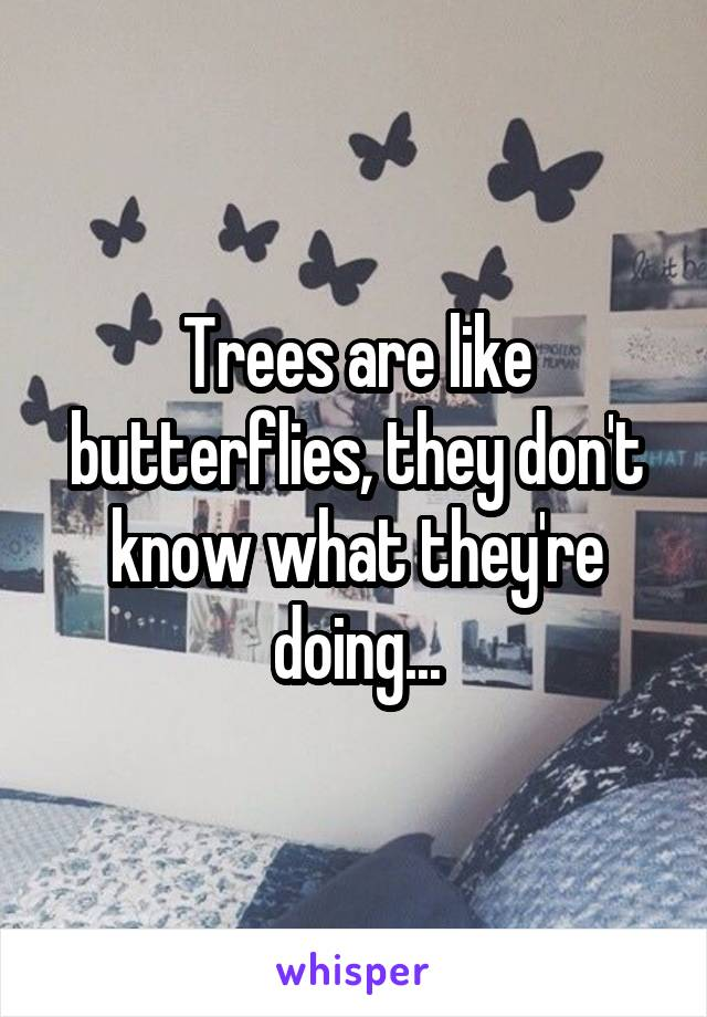 Trees are like butterflies, they don't know what they're doing...