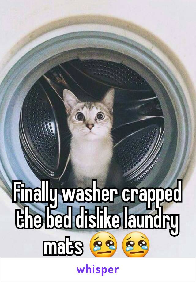 Finally washer crapped the bed dislike laundry mats 😢😢