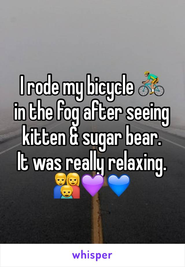 I rode my bicycle 🚴🏽 in the fog after seeing kitten & sugar bear. It was really relaxing. 👪💜💙