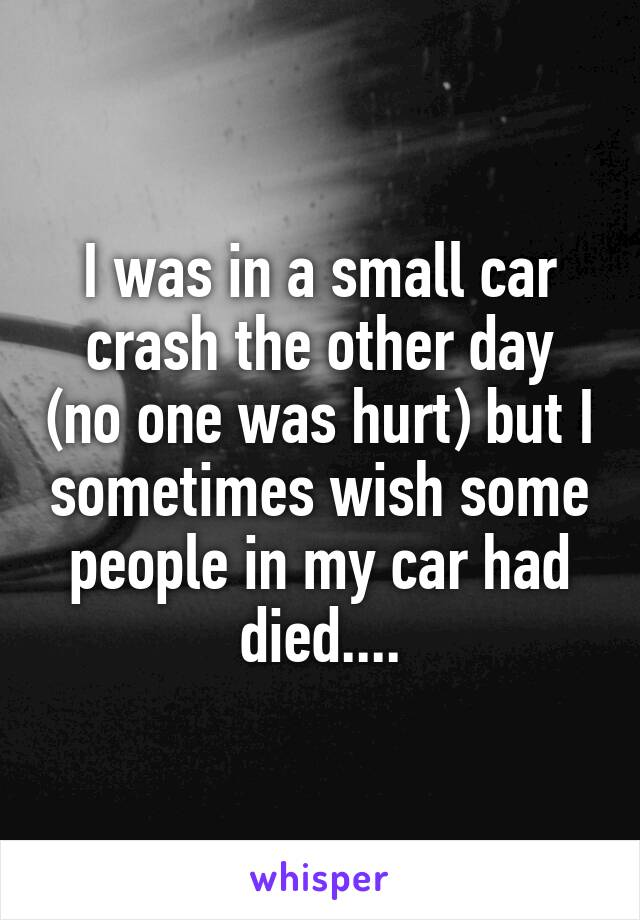 I was in a small car crash the other day (no one was hurt) but I sometimes wish some people in my car had died....
