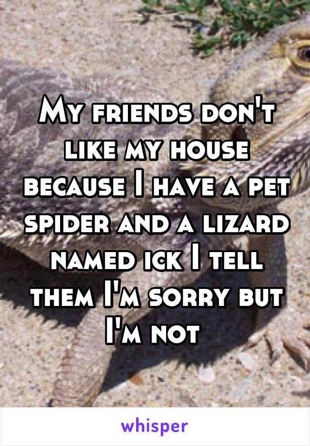 My friends don't like my house because I have a pet spider and a lizard named ick I tell them I'm sorry but I'm not