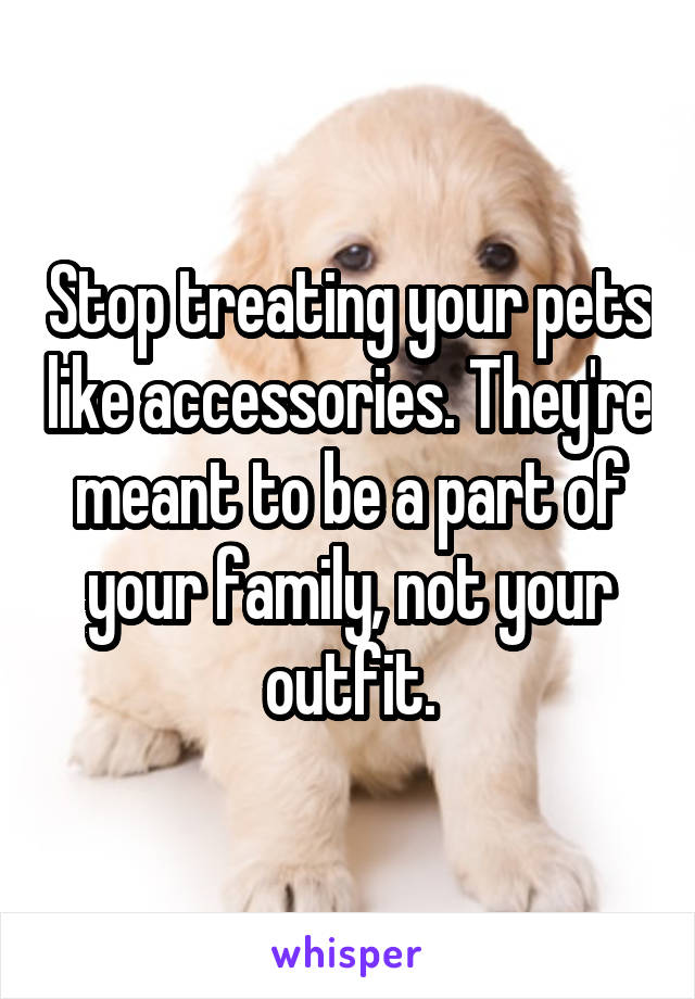 Stop treating your pets like accessories. They're meant to be a part of your family, not your outfit.