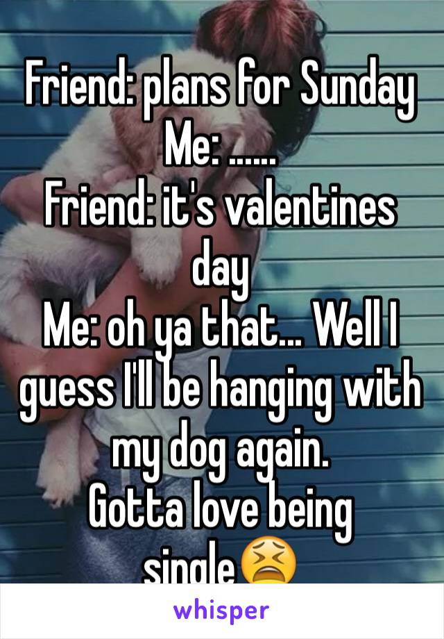 Friend: plans for Sunday Me: ...... Friend: it's valentines day  Me: oh ya that... Well I guess I'll be hanging with my dog again.  Gotta love being single😫