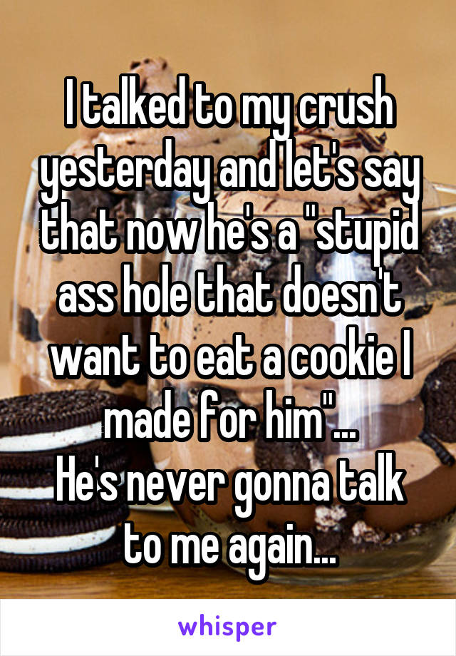 """I talked to my crush yesterday and let's say that now he's a """"stupid ass hole that doesn't want to eat a cookie I made for him""""... He's never gonna talk to me again..."""