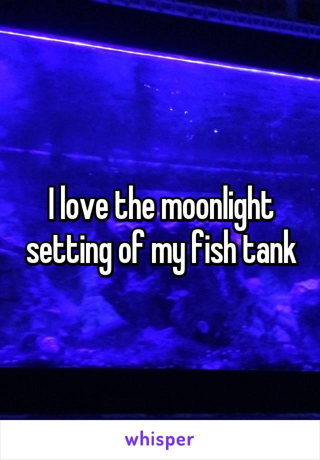 I love the moonlight setting of my fish tank