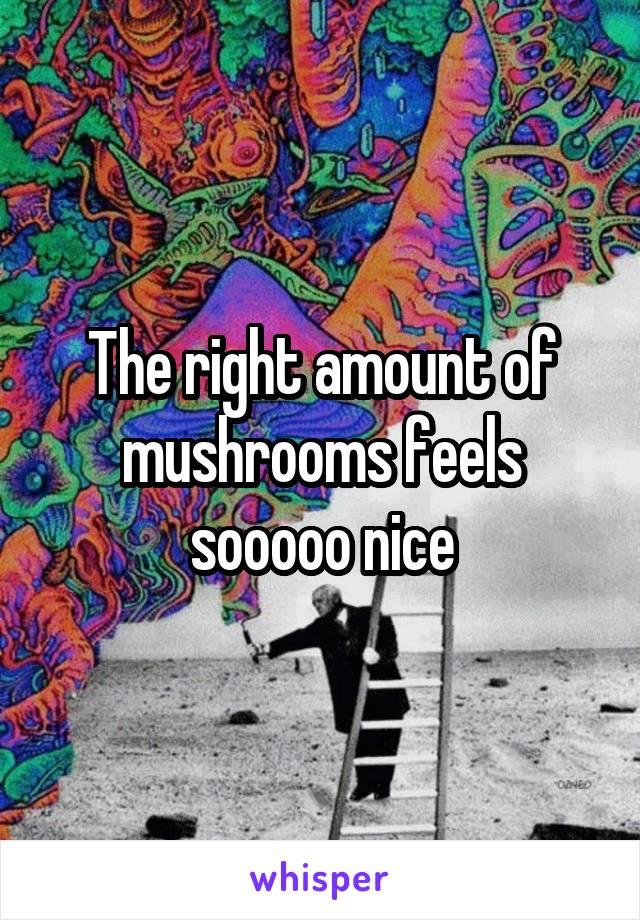 The right amount of mushrooms feels sooooo nice