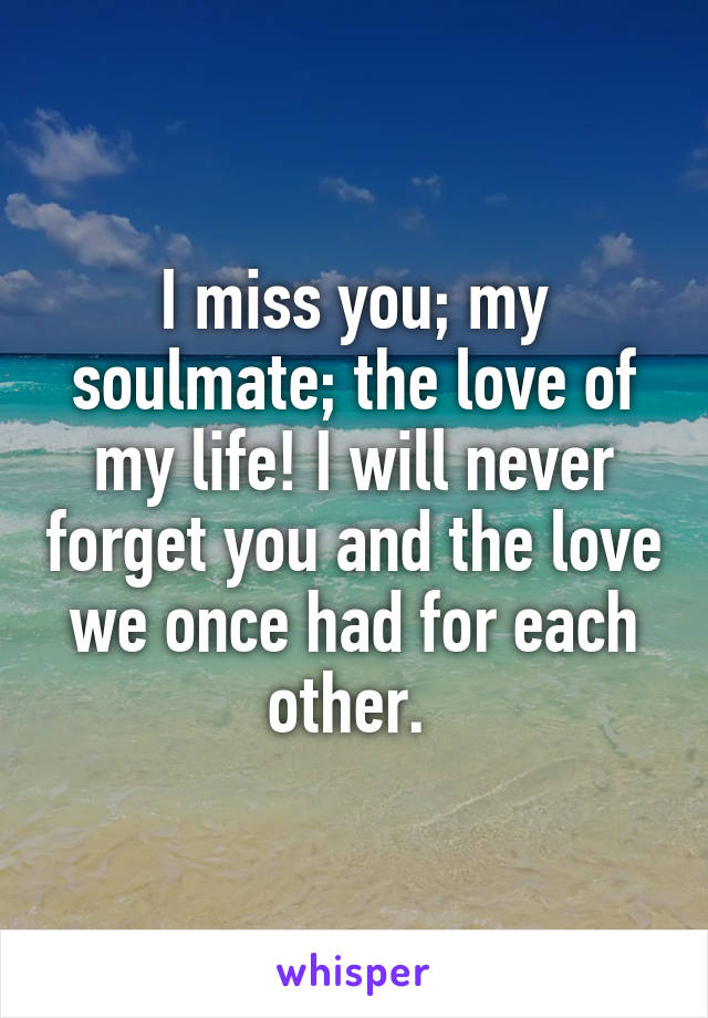 I miss you; my soulmate; the love of my life! I will never forget you and the love we once had for each other.