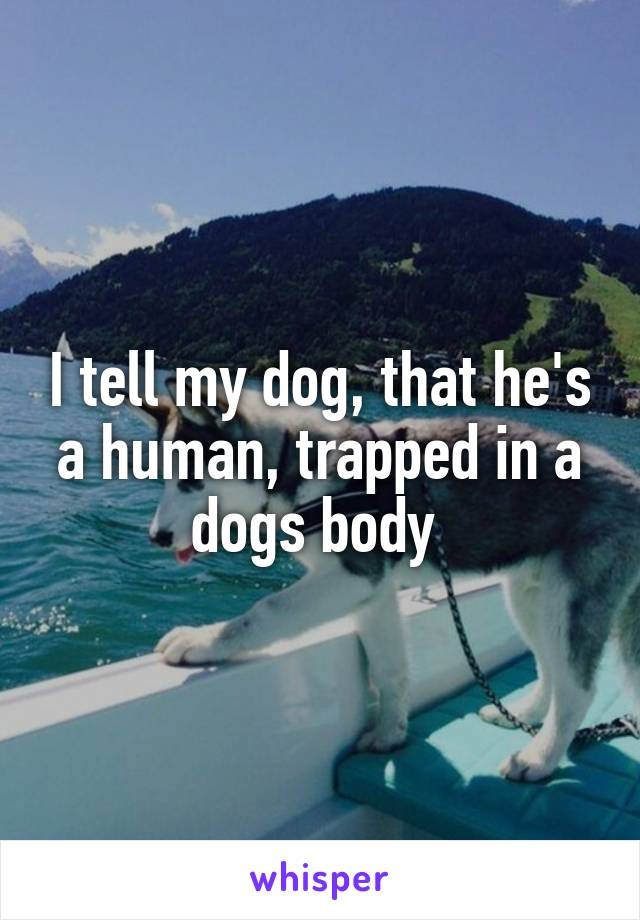 I tell my dog, that he's a human, trapped in a dogs body