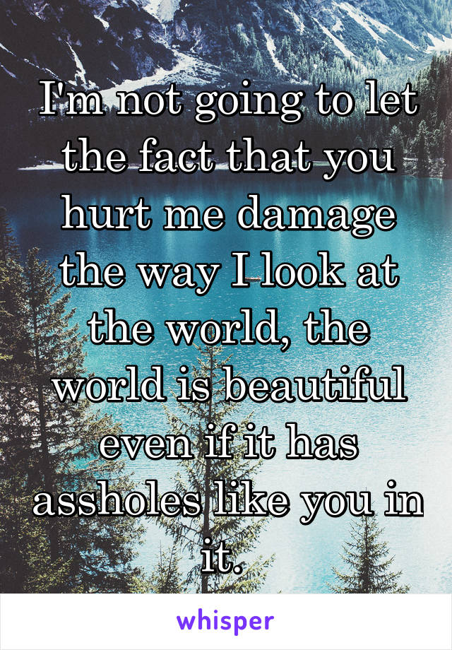 I'm not going to let the fact that you hurt me damage the way I look at the world, the world is beautiful even if it has assholes like you in it.