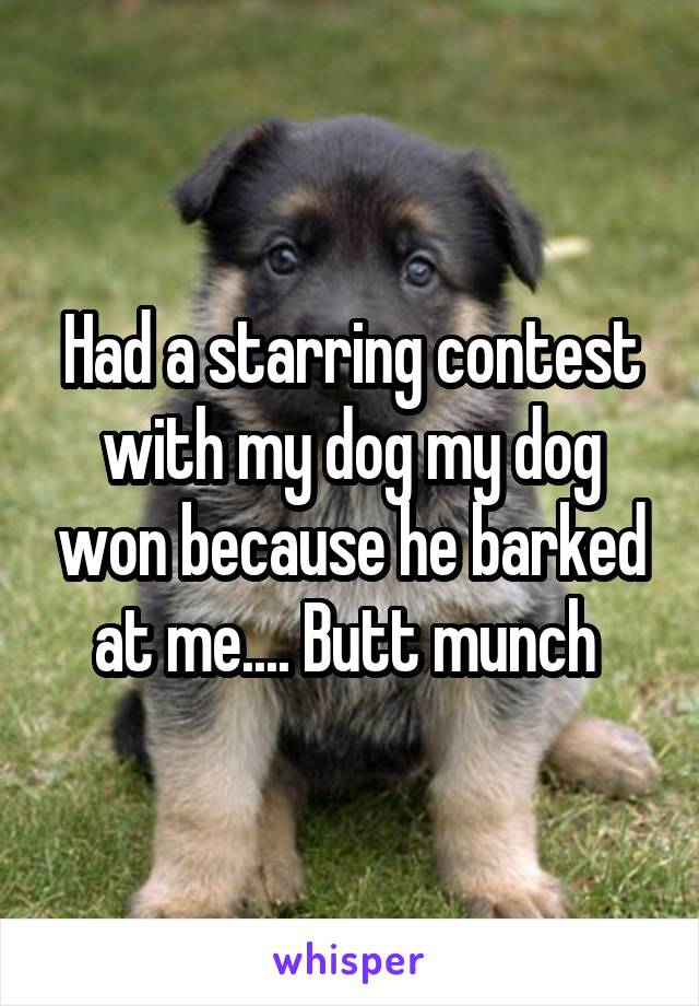 Had a starring contest with my dog my dog won because he barked at me.... Butt munch