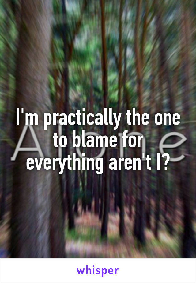 I'm practically the one to blame for everything aren't I?