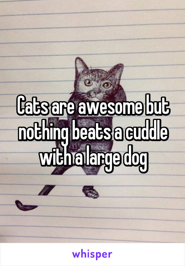 Cats are awesome but nothing beats a cuddle with a large dog