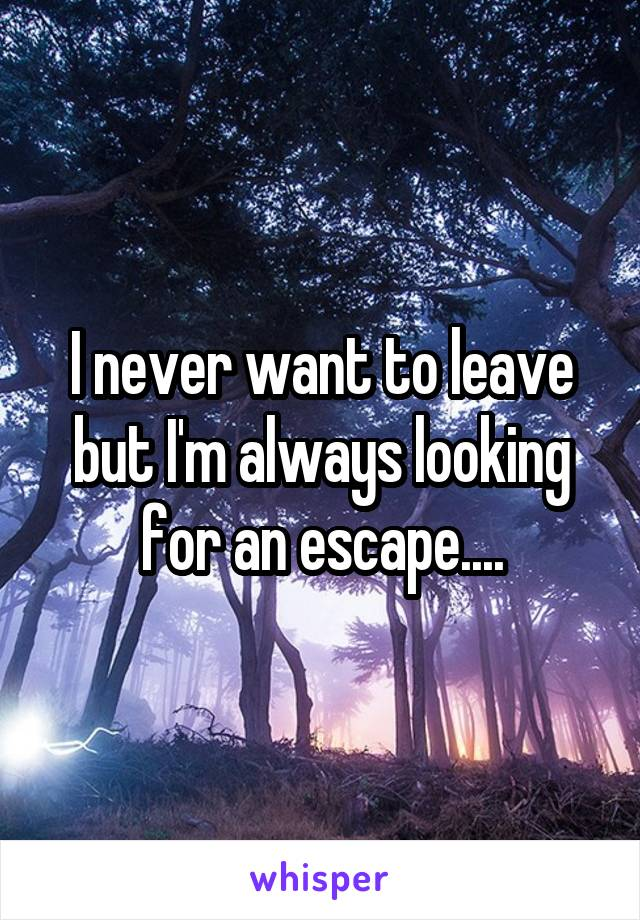 I never want to leave but I'm always looking for an escape....