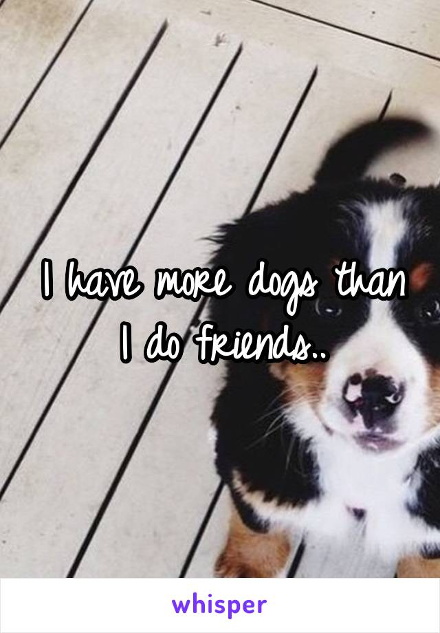 I have more dogs than I do friends..