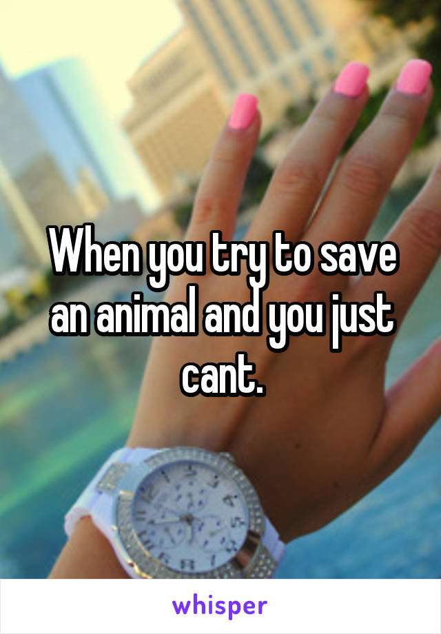 When you try to save an animal and you just cant.