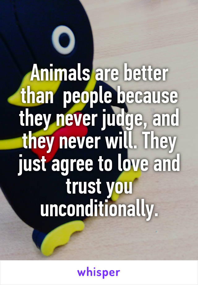 Animals are better than  people because they never judge, and they never will. They just agree to love and trust you unconditionally.