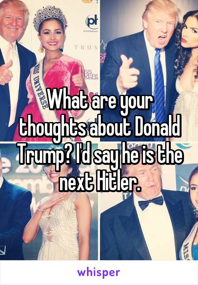 What are your thoughts about Donald Trump? I'd say he is the next Hitler.