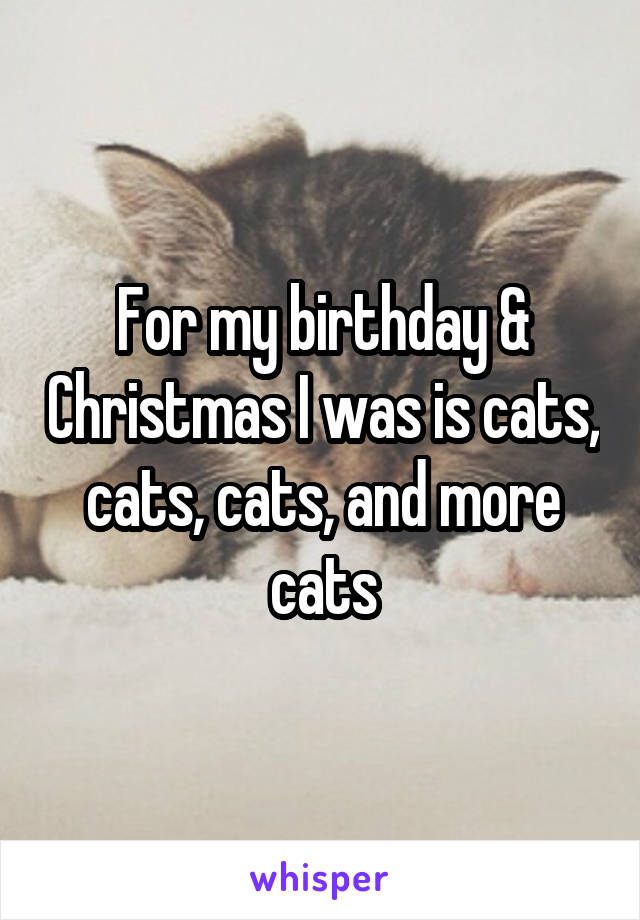 For my birthday & Christmas I was is cats, cats, cats, and more cats