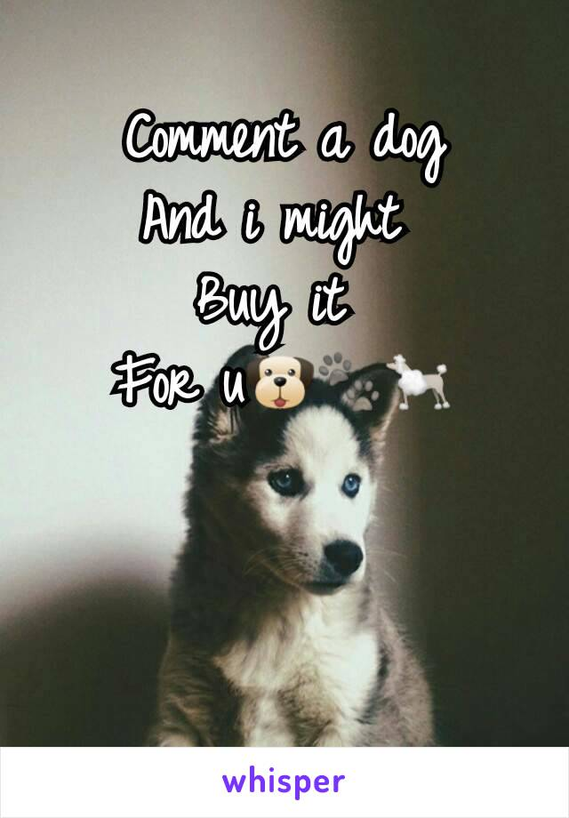 Comment a dog And i might  Buy it  For u🐶🐾🐩