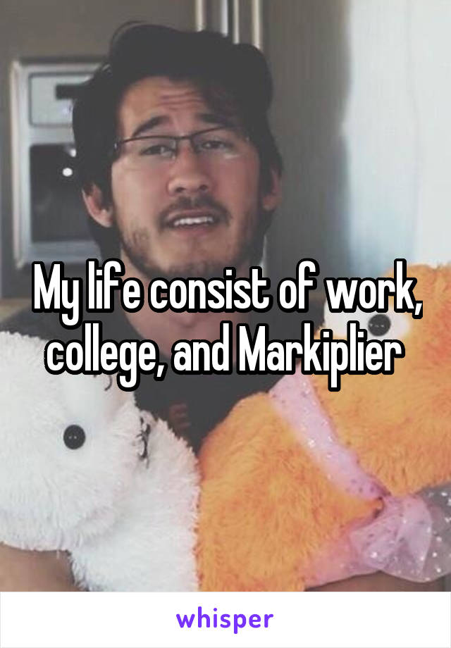 My life consist of work, college, and Markiplier