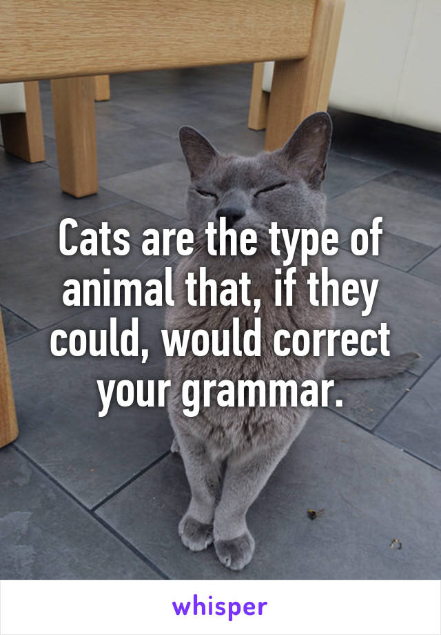Cats are the type of animal that, if they could, would correct your grammar.