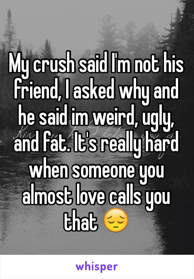 My crush said I'm not his friend, I asked why and he said im weird, ugly, and fat. It's really hard when someone you almost love calls you that 😔