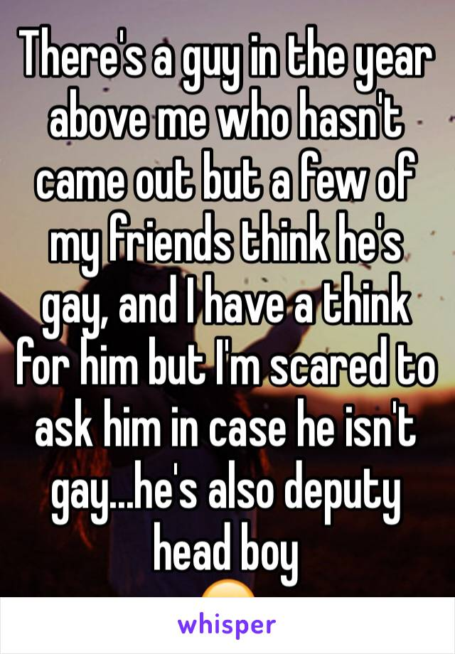 There's a guy in the year above me who hasn't came out but a few of my friends think he's gay, and I have a think for him but I'm scared to ask him in case he isn't gay...he's also deputy head boy 😬