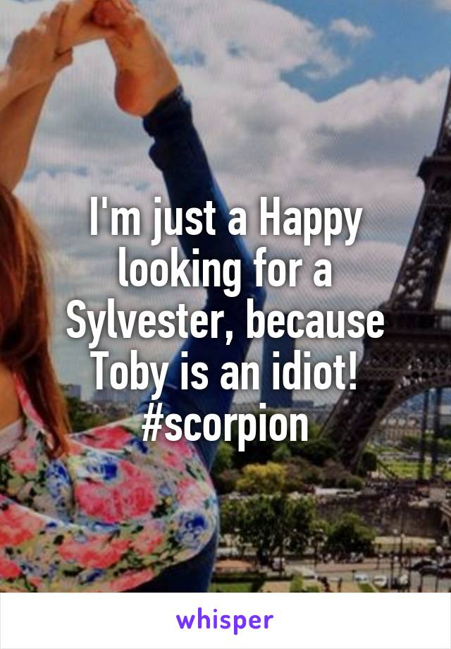 I'm just a Happy looking for a Sylvester, because Toby is an idiot! #scorpion