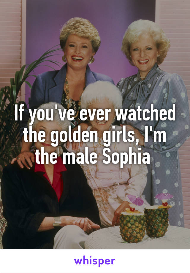 If you've ever watched the golden girls, I'm the male Sophia