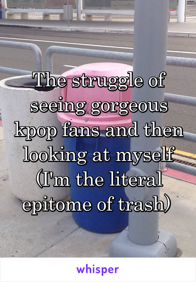The struggle of seeing gorgeous kpop fans and then looking at myself (I'm the literal epitome of trash)