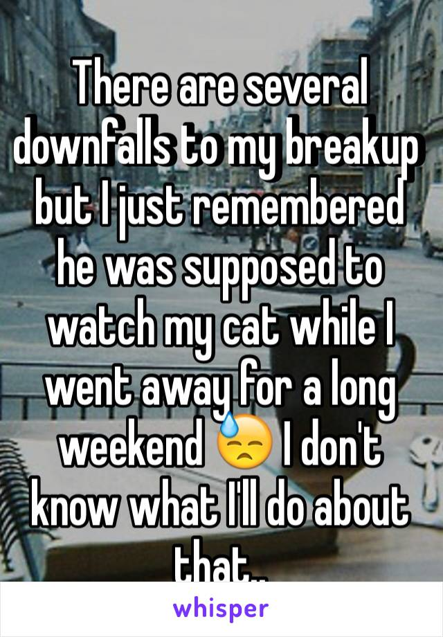 There are several downfalls to my breakup but I just remembered he was supposed to watch my cat while I went away for a long weekend 😓 I don't know what I'll do about that..