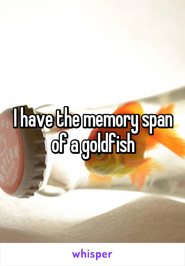 I have the memory span of a goldfish