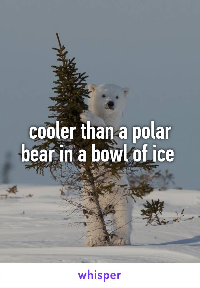 cooler than a polar bear in a bowl of ice