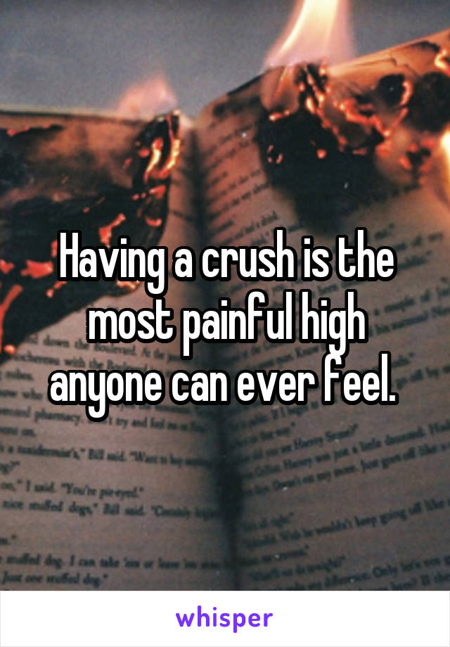 Having a crush is the most painful high anyone can ever feel.