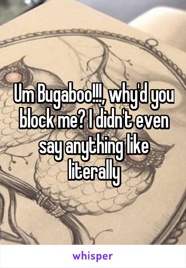 Um Bugaboo!!!, why'd you block me? I didn't even say anything like literally