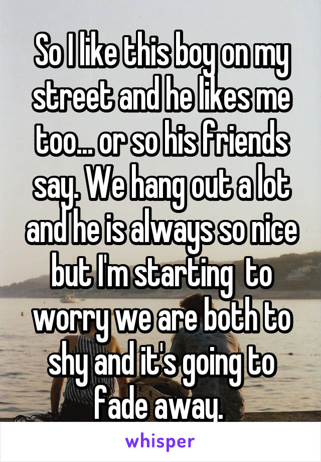 So I like this boy on my street and he likes me too... or so his friends say. We hang out a lot and he is always so nice but I'm starting  to worry we are both to shy and it's going to fade away.
