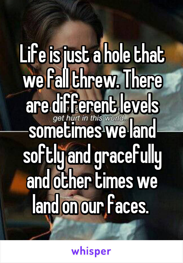 Life is just a hole that we fall threw. There are different levels sometimes we land softly and gracefully and other times we land on our faces.